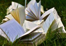 europrogettazione, glossario, terminologia, progetti